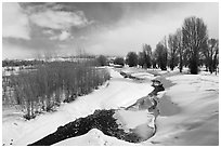 Snowscape with stream. Grand Teton National Park, Wyoming, USA. (black and white)