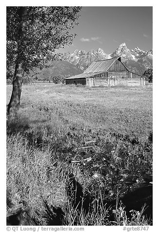 Pasture and historical barn at the base of mountain range. Grand Teton National Park (black and white)