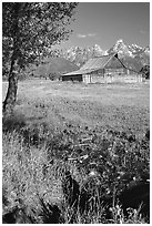 Pasture and historical barn at the base of mountain range. Grand Teton National Park, Wyoming, USA. (black and white)