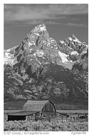 Historic Moulton Barn and Grand Tetons, morning. Grand Teton National Park (black and white)