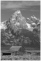 Historic Moulton Barn and Grand Tetons, morning. Grand Teton National Park, Wyoming, USA. (black and white)