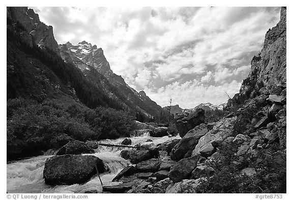Cascade Creek flows in Cascade Canyon. Grand Teton National Park (black and white)