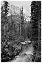 Cascade Creek and Tetons. Grand Teton National Park, Wyoming, USA. (black and white)