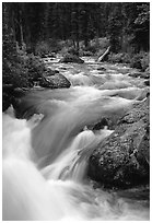 Cascade Creek flowing over rocks. Grand Teton National Park ( black and white)