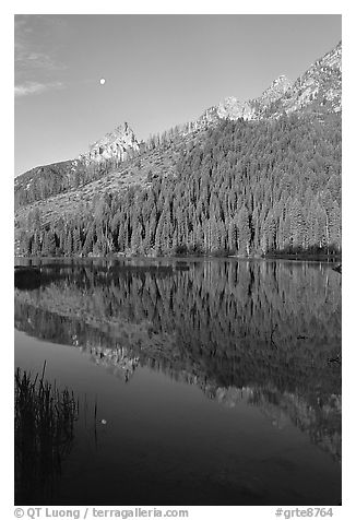 String Lake and Tetons, sunrise. Grand Teton National Park (black and white)