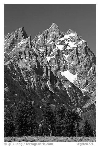 Rocky peaks of Cathedral group, morning. Grand Teton National Park (black and white)