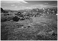 Alpine tundra near Trail Ridge Road in summer. Rocky Mountain National Park, Colorado, USA. (black and white)