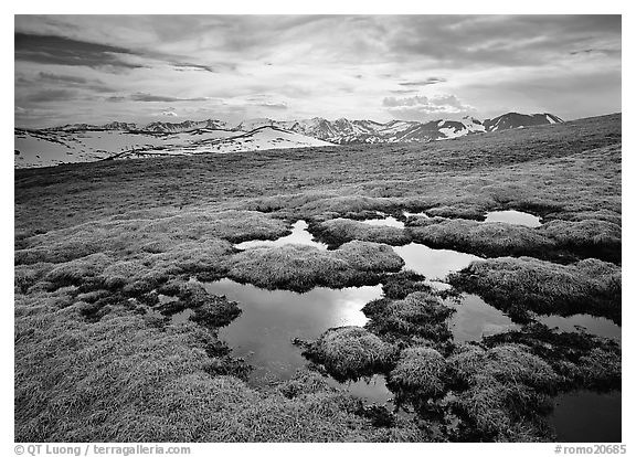 Alpine tundra and the Never Summer range. Rocky Mountain National Park (black and white)