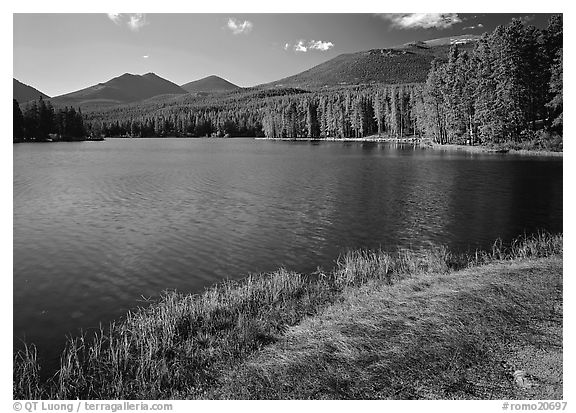 Sprague Lake, and forested peaks, morning. Rocky Mountain National Park (black and white)