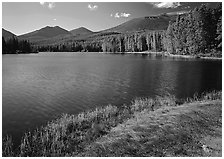 Sprague Lake, and forested peaks, morning. Rocky Mountain National Park, Colorado, USA. (black and white)