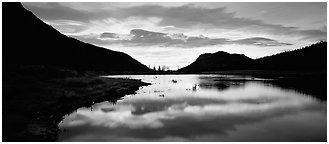 Cloud reflected in pond at sunrise. Rocky Mountain National Park (Panoramic black and white)