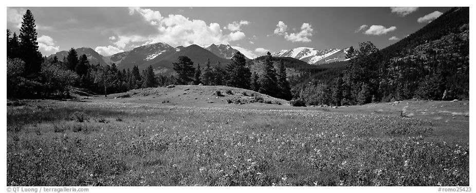 Panoramic black and white picture photo summer mountain landscape rocky mountain national park