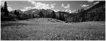 Summer mountain landscape. Rocky Mountain National Park (Panoramic black and white)