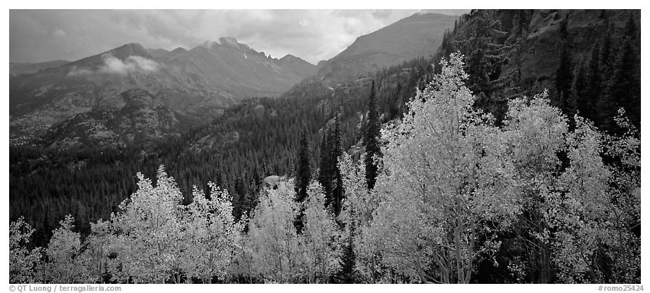 Autumn mountain landscape. Rocky Mountain National Park (black and white)