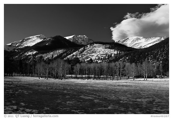Aspens and mountains, West Horseshoe Park, winter. Rocky Mountain National Park, Colorado, USA.