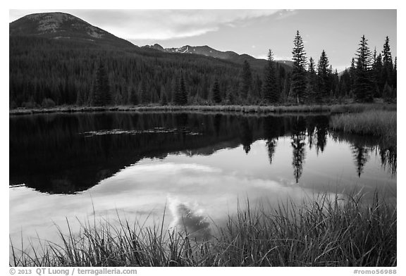 Beaver Pond, Kawuneeche Valley. Rocky Mountain National Park (black and white)