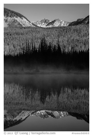 Never Summer Mountains reflected in beaver pond. Rocky Mountain National Park (black and white)