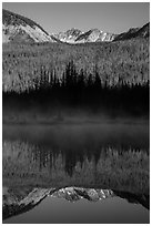 Never Summer Mountains reflected in beaver pond. Rocky Mountain National Park, Colorado, USA. (black and white)