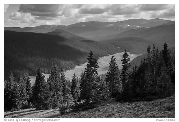 Cache la Poudre River Valley. Rocky Mountain National Park (black and white)