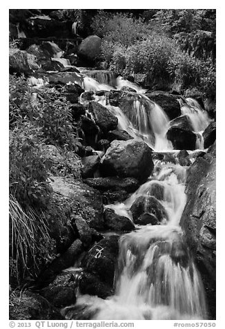Cascading stream. Rocky Mountain National Park (black and white)