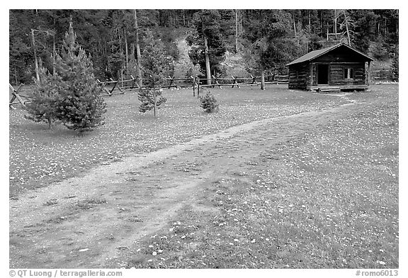 Path and historic cabin at Never Summer Ranch. Rocky Mountain National Park (black and white)