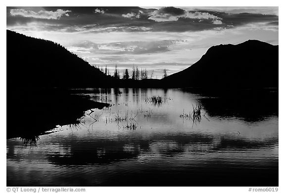 Sunrise on a pond in Horseshoe Park. Rocky Mountain National Park (black and white)