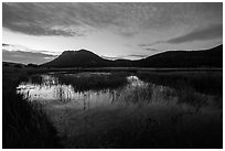 Sheep Lakes at dawn. Rocky Mountain National Park ( black and white)