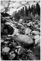 Alluvial Fan cascades. Rocky Mountain National Park ( black and white)