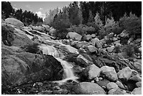 Alluvial Fan in autumn. Rocky Mountain National Park ( black and white)