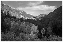 Old Fall River valley in autumn. Rocky Mountain National Park ( black and white)