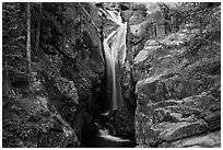 Chasm Falls flowing in narrow gorge. Rocky Mountain National Park ( black and white)