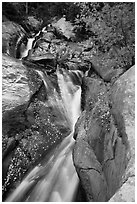 Cascades above Chasm Falls. Rocky Mountain National Park ( black and white)