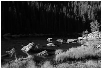 Grasses, boulders, lakeshore, Dream Lake. Rocky Mountain National Park ( black and white)