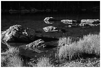 Grasses and boulders, Dream Lake. Rocky Mountain National Park ( black and white)