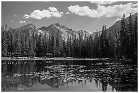 Longs Peak reflected in Nymph Lake. Rocky Mountain National Park ( black and white)