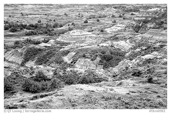 Badlands from Boicourt overlook. Theodore Roosevelt National Park (black and white)