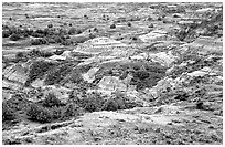 Badlands from Boicourt overlook. Theodore Roosevelt National Park ( black and white)
