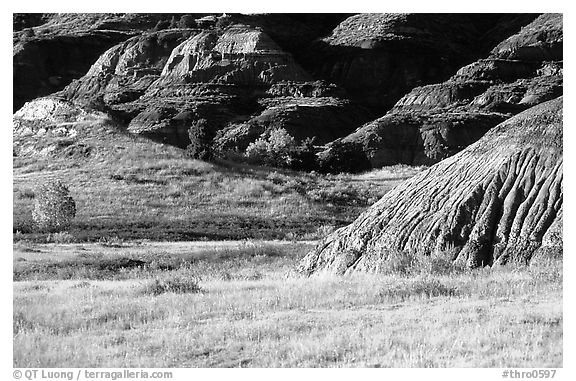 Badlands and prairie in North unit. Theodore Roosevelt National Park (black and white)