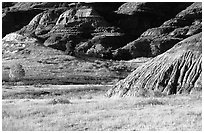 Badlands and prairie in North unit. Theodore Roosevelt National Park, North Dakota, USA. (black and white)