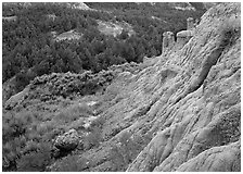 Badlands with Caprock chimneys, North Unit. Theodore Roosevelt National Park, North Dakota, USA. (black and white)