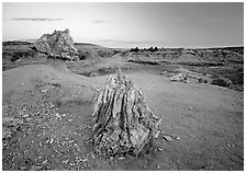 Pedestal petrified log and petrified stump sunset,. Theodore Roosevelt National Park, North Dakota, USA. (black and white)