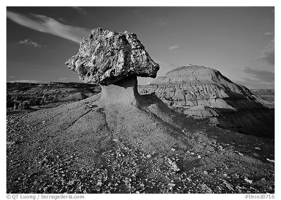 Pedestal petrified log and badlands, late afternoon. Theodore Roosevelt National Park (black and white)