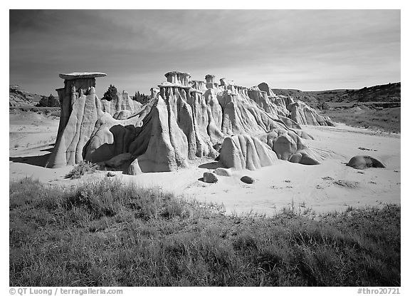 Mushroom pedestal formations, South Unit. Theodore Roosevelt National Park (black and white)