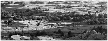 Landscape of prairie, badlands, and trees. Theodore Roosevelt National Park (Panoramic black and white)