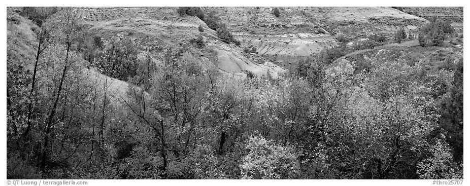Badlands landscape in autumn. Theodore Roosevelt National Park (black and white)