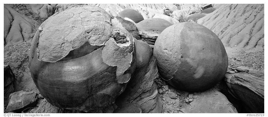 Large cannon ball rocks. Theodore Roosevelt National Park (black and white)
