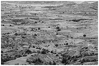 Painted Canyon. Theodore Roosevelt National Park, North Dakota, USA. (black and white)