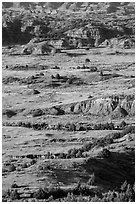 Rolling prairie and badlands, Painted Canyon. Theodore Roosevelt National Park, North Dakota, USA. (black and white)