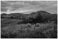 Sunset over grasses and badlands. Theodore Roosevelt National Park, North Dakota, USA. (black and white)