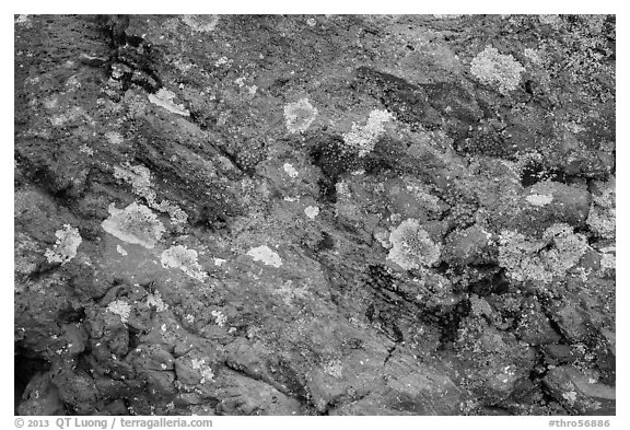 Close-up of red rocks with lichen. Theodore Roosevelt National Park (black and white)